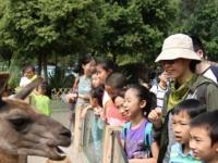 丰容动物园
